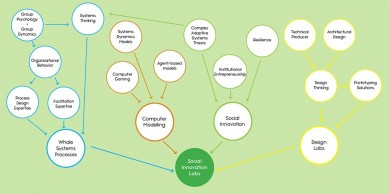Antecedents to Social Innovation Labs