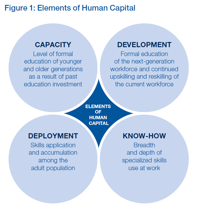 human capacity development summary The impact of globalization and human capacity building the development of human resources ranks high on the to enhance the human capacity for industrial.